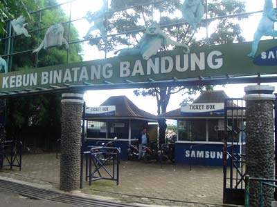 Berkunjung ke Kebun Binatang Bandung
