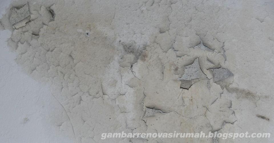 Tips Ampuh Mengatasi Rembesan Air pada Tembok Rumah