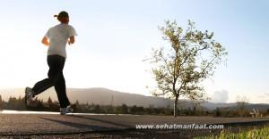 tips hidup sehat di tengah kesibukan beraktifitas