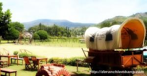 wisata de'ranch lembang nuansa peternakan ala cowboy