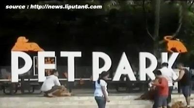 Taman Pet Park di Bandung
