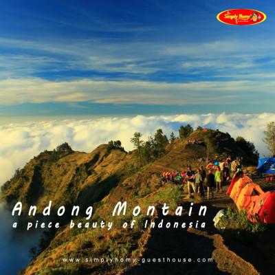 Ini dia wisata mendaki Gunung Andong di Magelang yang mudah untuk pendaki pemula