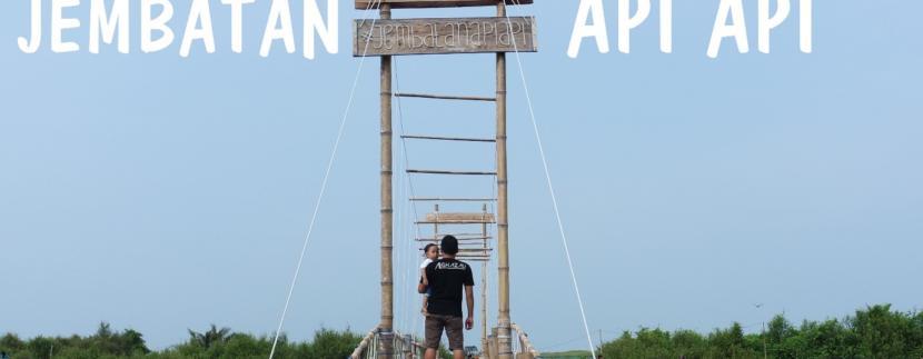 Inilah Jembatan Api Api, Spot Paling Ngehits Di Hutan Mangrove Kulon Progo