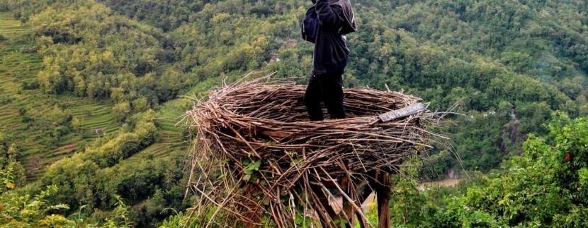 Indahnya Bukit Mojo Gumelem, Spot Sarang Burung Di Atas Bukit yang cocok untuk Foto Selfie