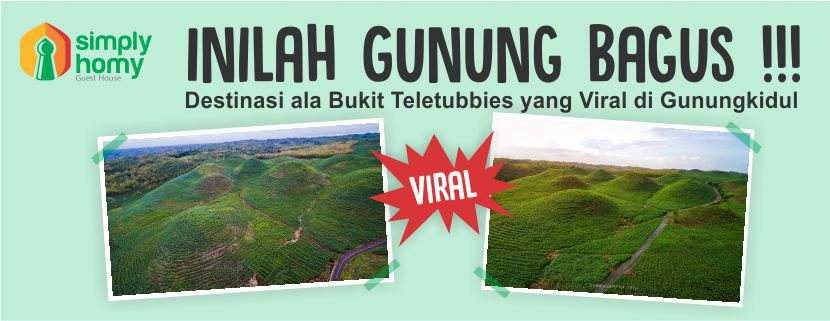 Inilah Gunung Bagus, Destinasi Ala Bukit Teletubbies yang Viral di Gunungkidul