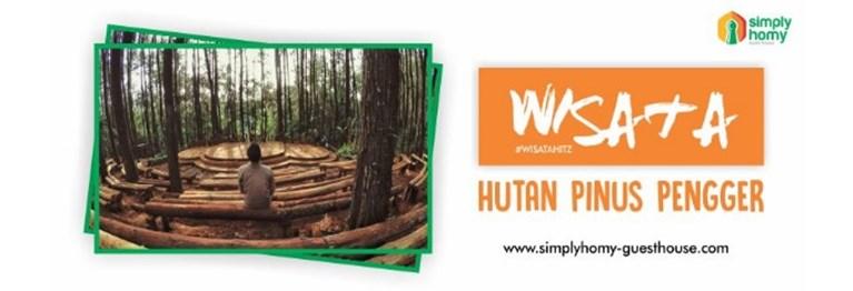 Simak Ulasan Wisata Alam di Jogja Hutan Pinus Pengger yang bisa Jadi Referensi Liburan